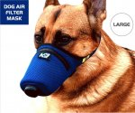 doggie mask.JPG