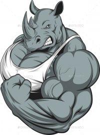 Rhino's Avatar